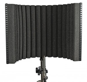 sE Electronics make a range of 'reflection filters' that can really improve the quality of your audio recordings by reducing unwanted sound getting to your microphone in the first place.