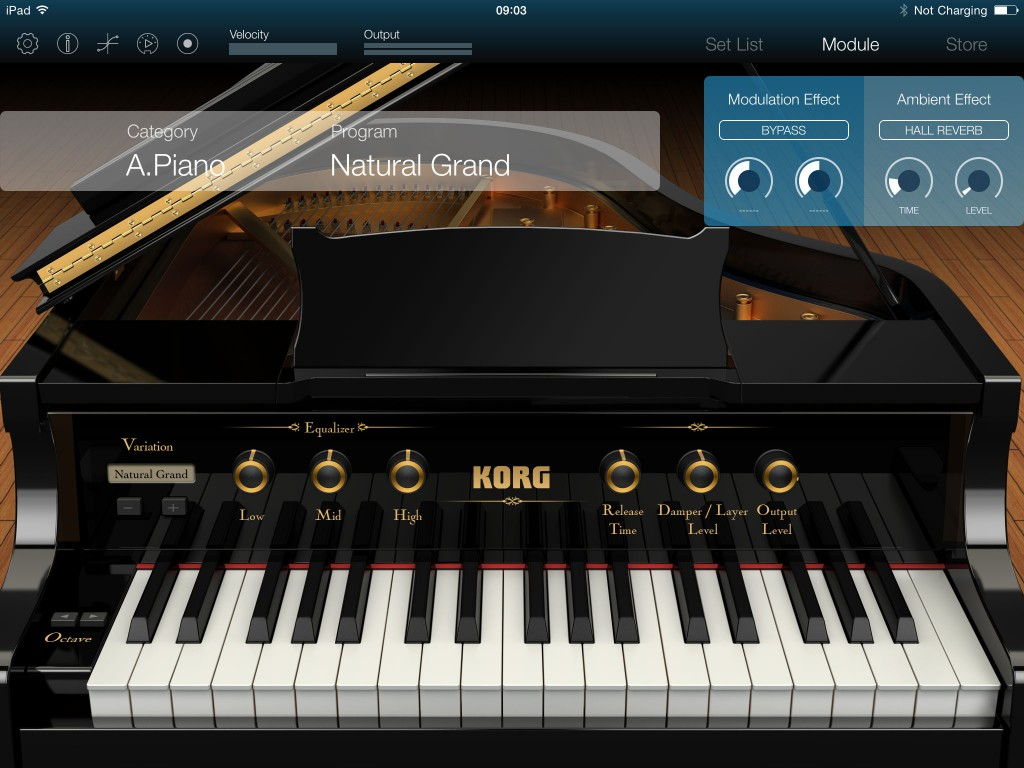 Korg Module - top-notch virtual instrument app for your iPad.