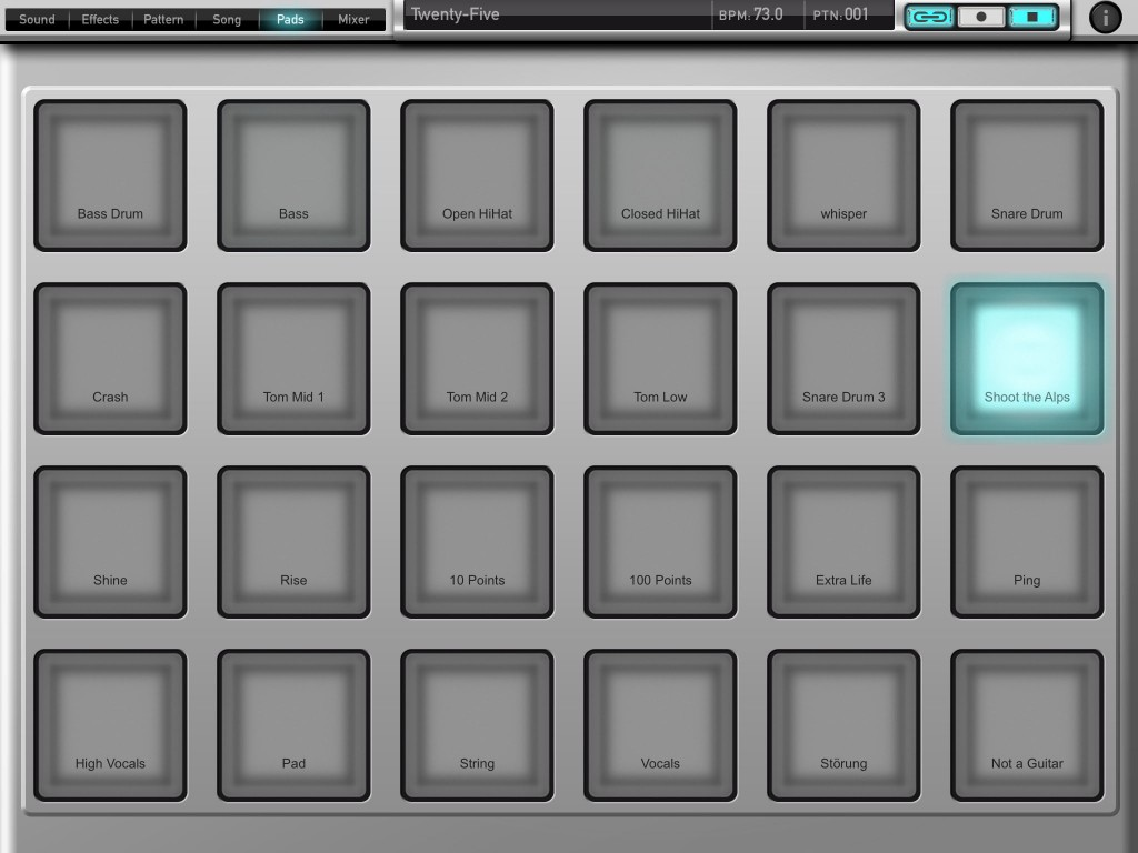 The Pads screen gives you a fairly standard set of trigger pads for live playing or programming.