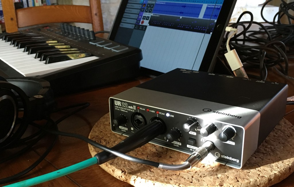 The UR22 mkII is a seriously good choice given the very modest price.
