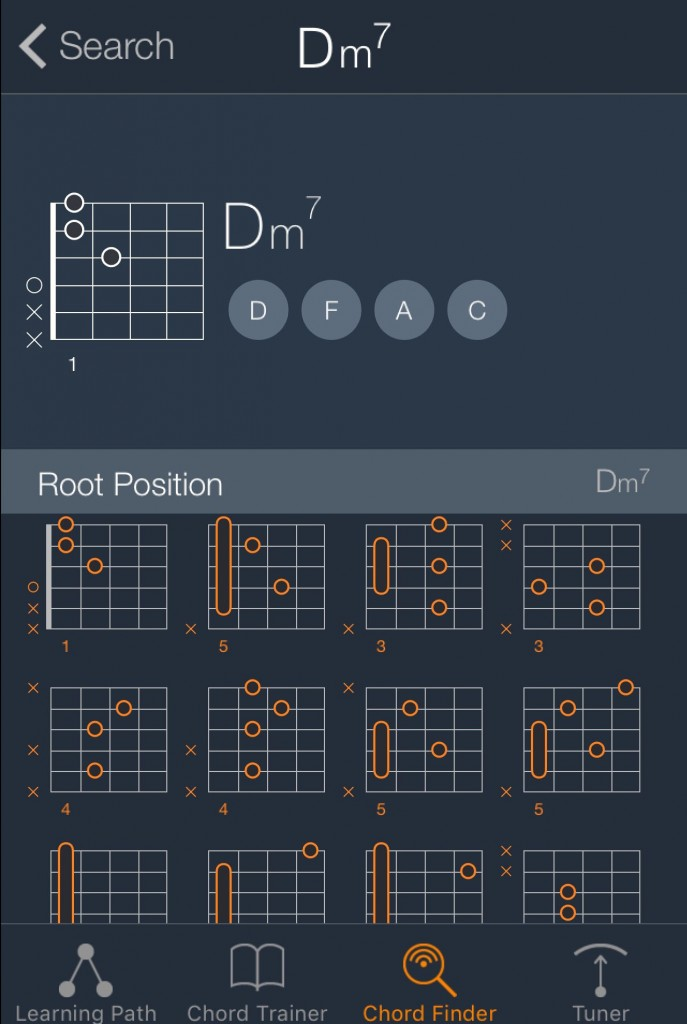 The app includes an extensive chord library that works with any of the available alternate tunings.