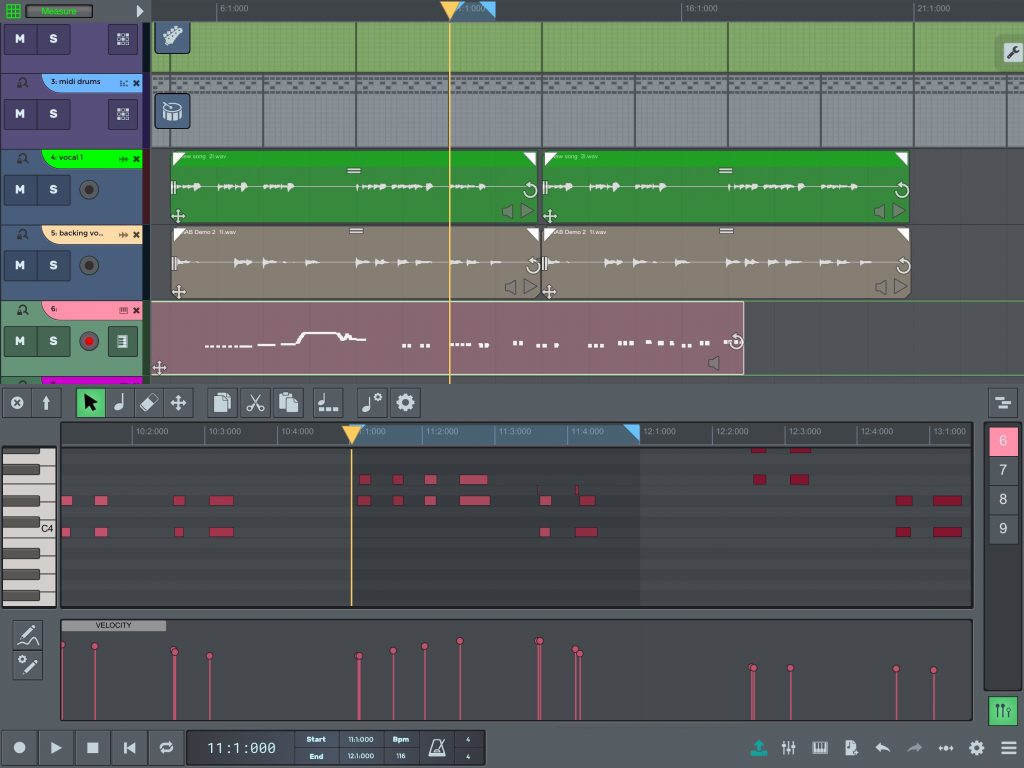 n-Track includes a very neat MIDI piano-roll editor.